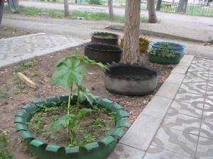 клумба для цветов из старых шин