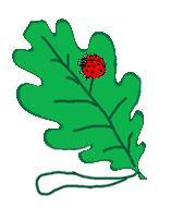 осенние аппликации - закладка из листьев