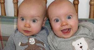 как появляются близнецы