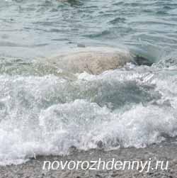 закалка на море в Крыме