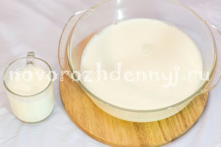 yogurt-multivarka-zakaska556B6149