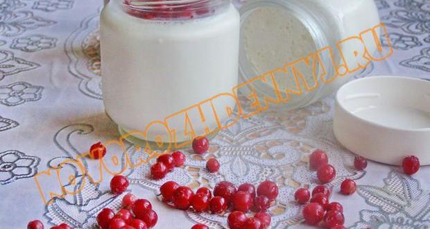 йогурт в домашних условиях для ребенка