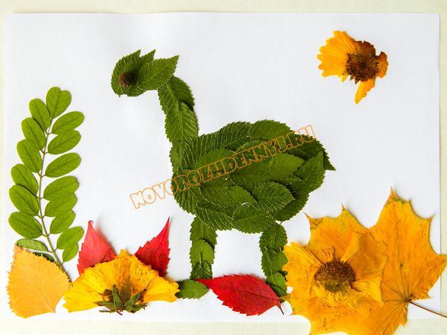 Аппликация из сухих цветов - 50b